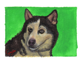 Siberian Husky Notecards