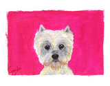 Westhighland Terrier Notecards