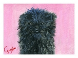 affenpinscher-notecard-by-dj-geribo-at-help-shelter-pets-thumbnail-image