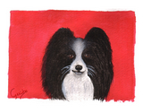 papillon-notecard-by-dj-geribo-at-help-shelter-pets-thumbnail-image.jpg